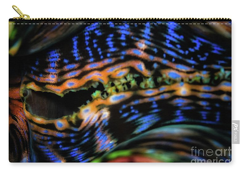 Clam Carry-all Pouch featuring the photograph Psychedellic Clam by Doug Sturgess