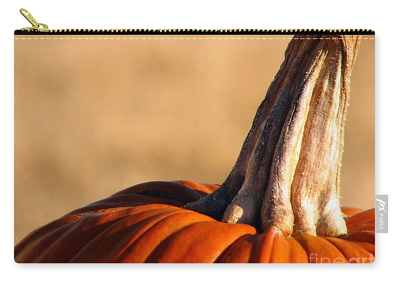 Pumpkins Carry-all Pouch featuring the photograph Pumpkin by Amanda Barcon