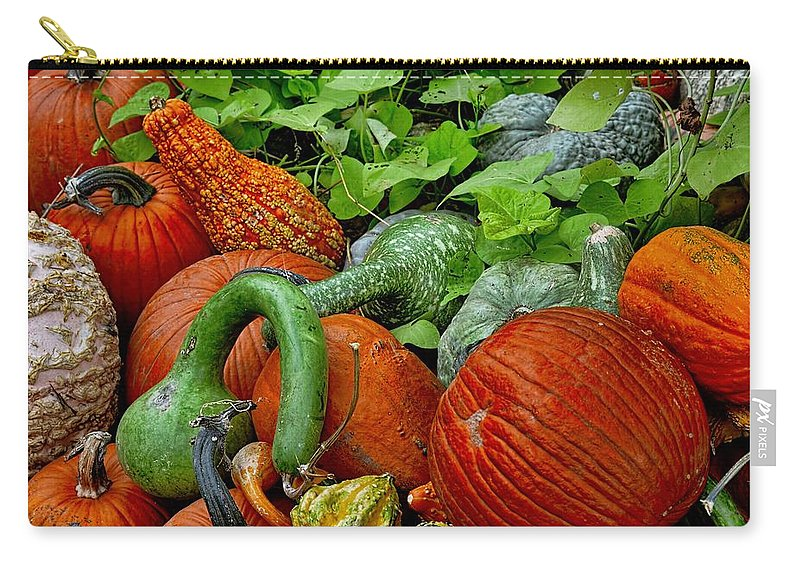 Autumn Carry-all Pouch featuring the photograph Pumpkin Patch by Diana Mary Sharpton
