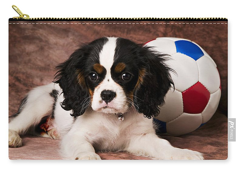 Puppy Dog Cute Doggy Domestic Pup Pet Pedigree Canine Creature Soccer Ball Carry-all Pouch featuring the photograph Puppy With Ball by Garry Gay