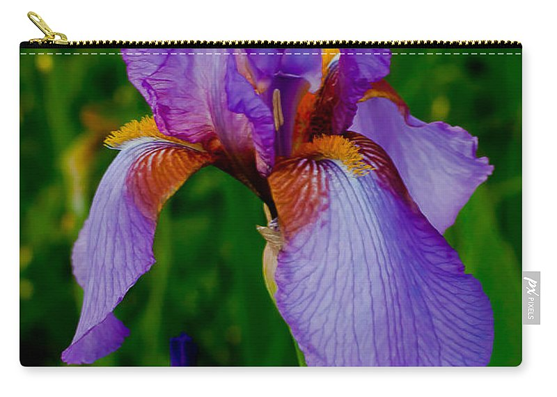 Bearded Carry-all Pouch featuring the photograph Purple Bearded Iris Portrait by Emerald Studio Photography