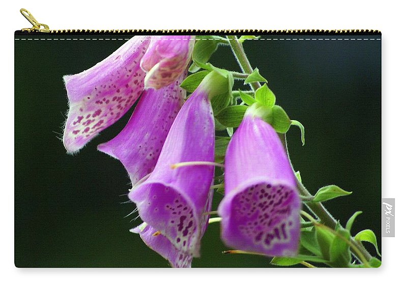 Flowers Carry-all Pouch featuring the photograph Purple Bells Horizontal by Marty Koch