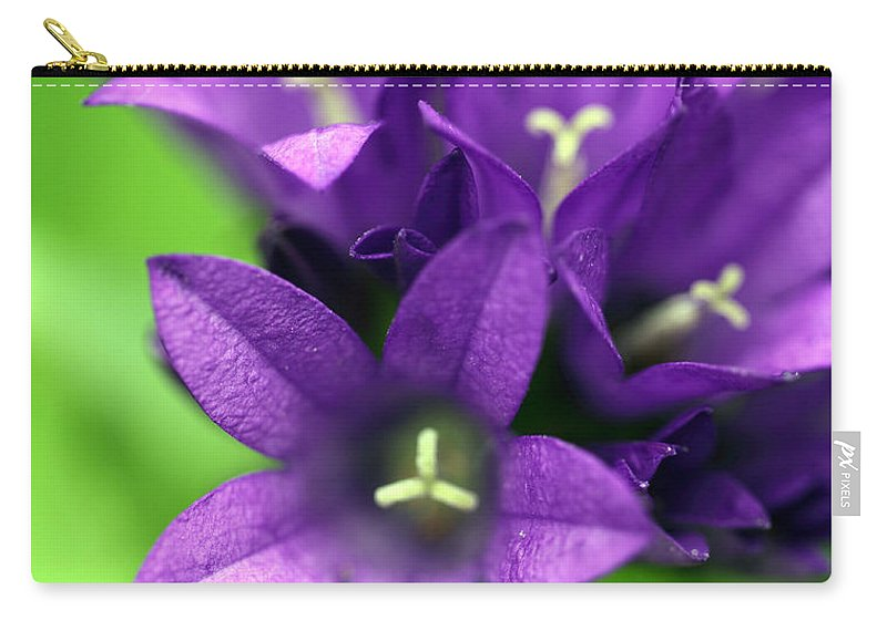 Floral Carry-all Pouch featuring the photograph Purple Blooms by Amanda Barcon