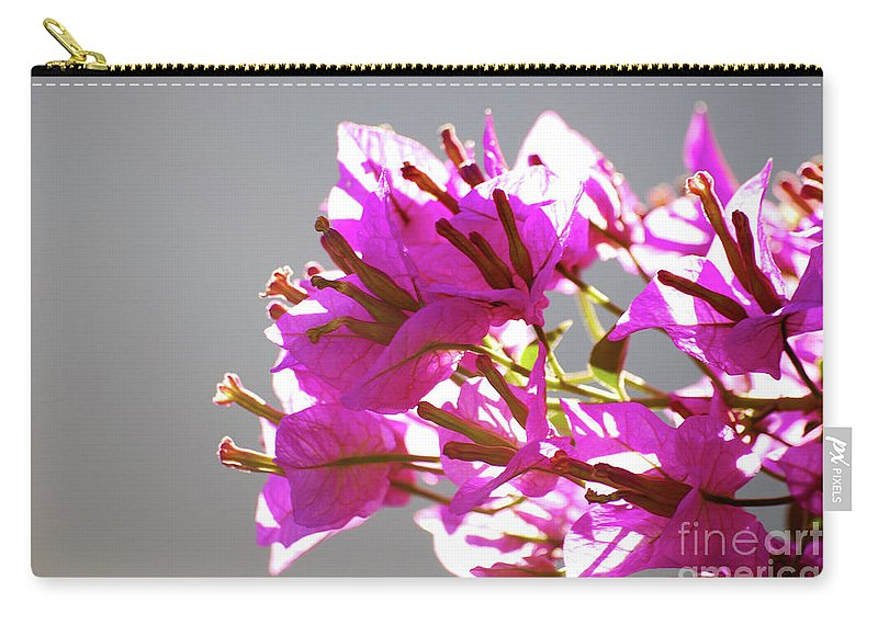 Bougainvillea Carry-all Pouch featuring the photograph Purple Bougainvillea Flower by Ersoy Basciftci