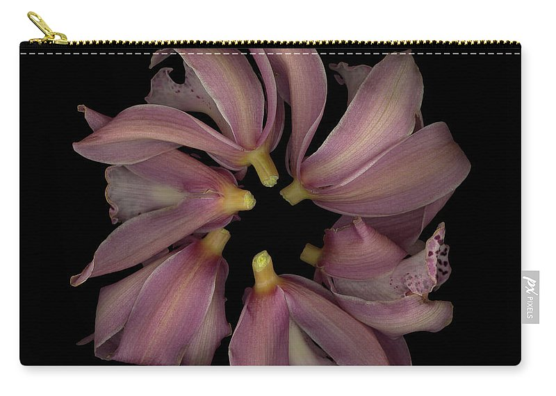 Carry-all Pouch featuring the photograph Purple Circle Backs by Heather Kirk