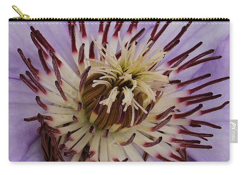 Clematis Carry-all Pouch featuring the photograph Purple Clematis by Michael Peychich