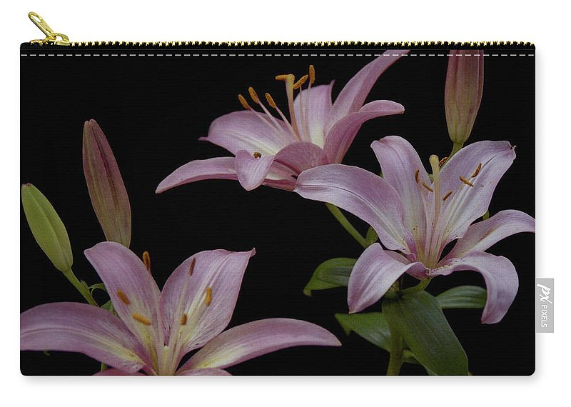 Flower Carry-all Pouch featuring the photograph Purple Day Lilies by Michael Peychich