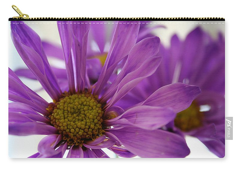 Flowers Purple Macro Daisy Spring Yellow Digital Photography Carry-all Pouch featuring the photograph Purple Delight by Linda Sannuti