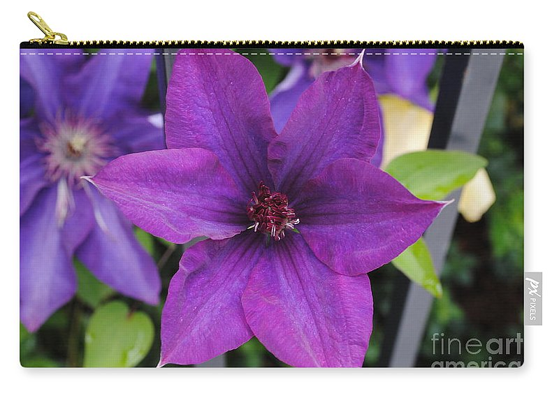 Flower Carry-all Pouch featuring the photograph Purple Floral by Jost Houk