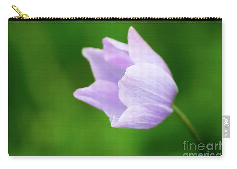 Purple Flower Carry-all Pouch featuring the photograph Purple Flower by Ersoy Basciftci