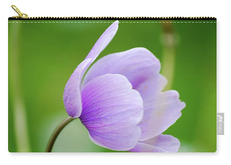 Purple Flower Carry-all Pouch featuring the photograph Purple Flower Looking Right Side by Ersoy Basciftci