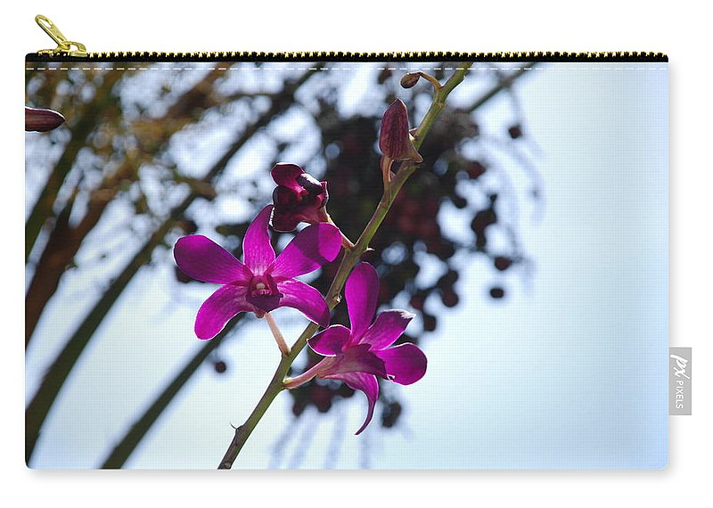 Macro Carry-all Pouch featuring the photograph Purple Flowers In The Sky by Rob Hans