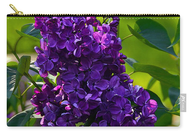 Syringa Vulgaris Carry-all Pouch featuring the photograph Purple French Lilac by Catherine Sherman
