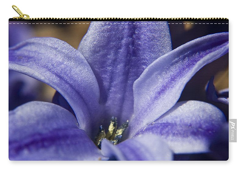 Hyacinth Carry-all Pouch featuring the photograph Purple Hyacinth by Teresa Mucha