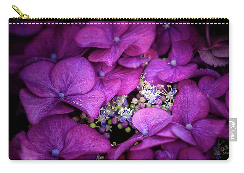Hydrangeas Carry-all Pouch featuring the photograph Purple Hydrangeas by Doug Sturgess