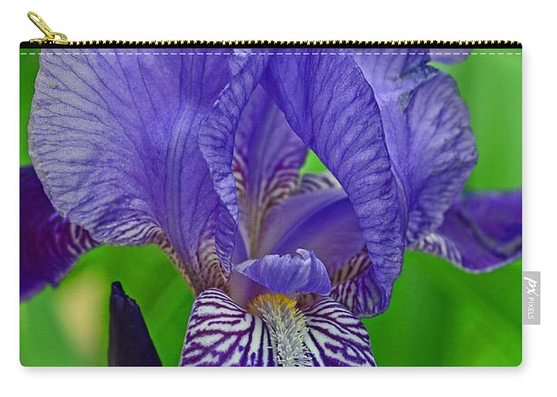 Purple Iris Carry-all Pouch featuring the photograph Purple Iris by Lisa Phillips