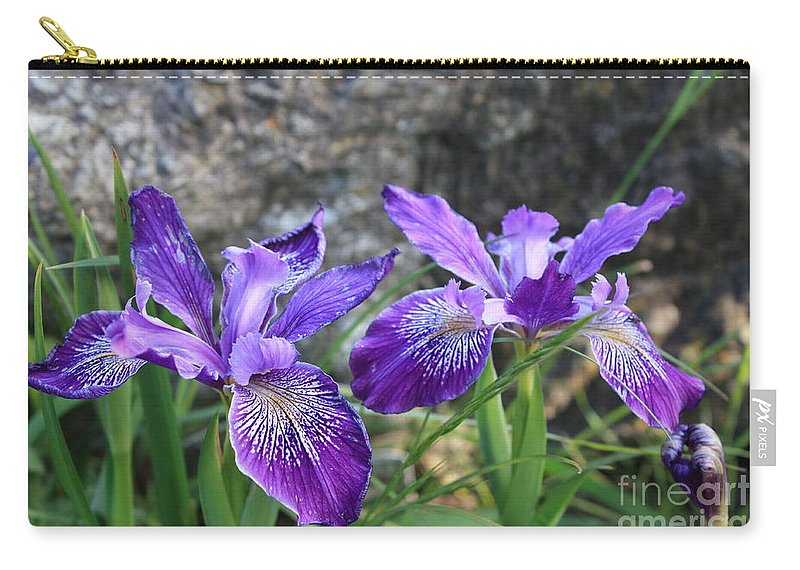 Purple Carry-all Pouch featuring the photograph Purple Irises With Gray Rock by Carol Groenen