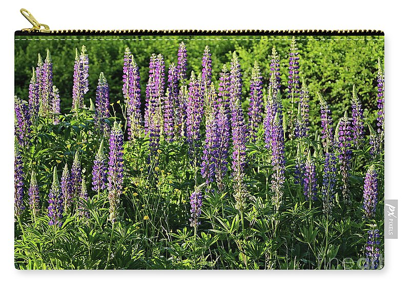 Landscape Carry-all Pouch featuring the photograph Purple Lupines In Summer by Sandra Huston
