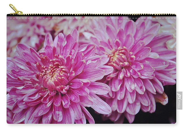 Fall Carry-all Pouch featuring the photograph Purple Mums by JAMART Photography