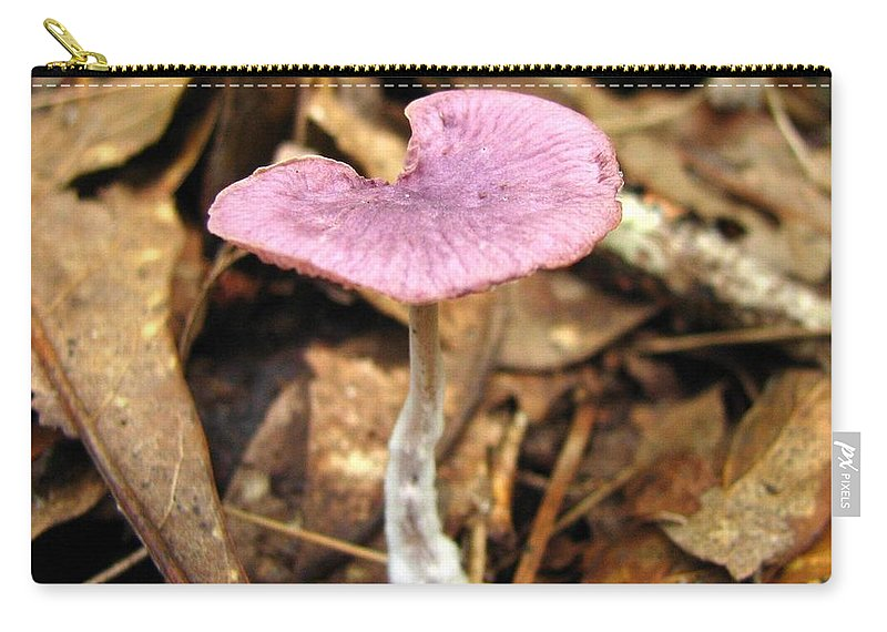 Fungi Carry-all Pouch featuring the photograph Purple Mushroom 1 by J M Farris Photography