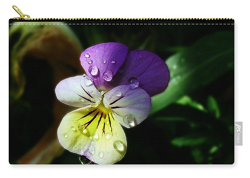 Flower Carry-all Pouch featuring the photograph Purple Pansy by Anthony Jones