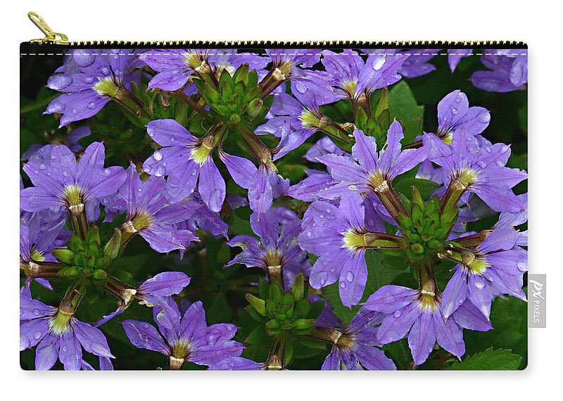 Purple Flower Plant Green Photograph Photography Carry-all Pouch featuring the photograph Purple Perspective by Shari Jardina