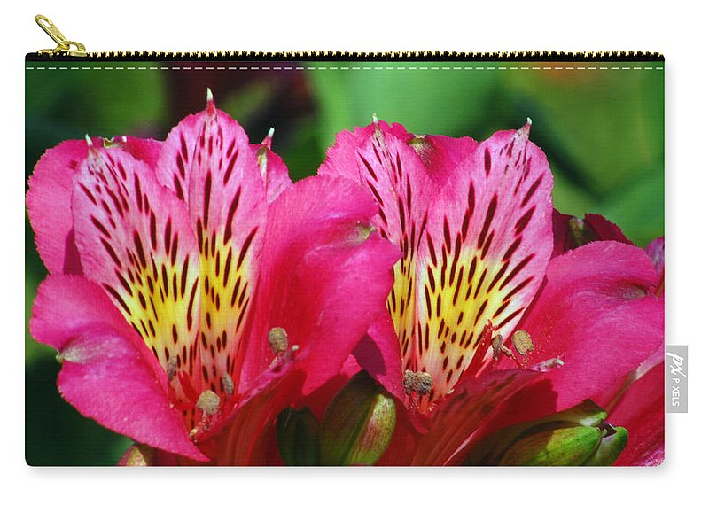 Peruvian Carry-all Pouch featuring the photograph Purple Peruvian Lily by Amy Fose