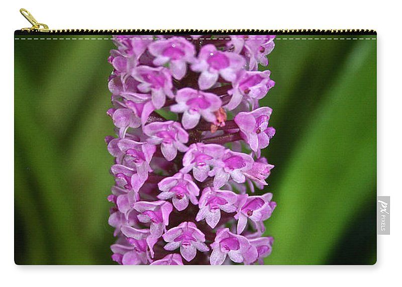 Tropical Plant Carry-all Pouch featuring the photograph Purple Pillar by Susan Herber