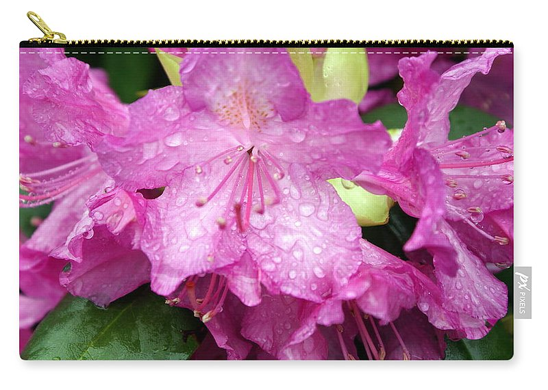 Flowers Carry-all Pouch featuring the photograph Purple Pink Horizontal by Marty Koch