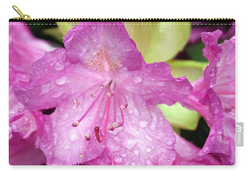 Fllowers Carry-all Pouch featuring the photograph Purple Pink by Marty Koch