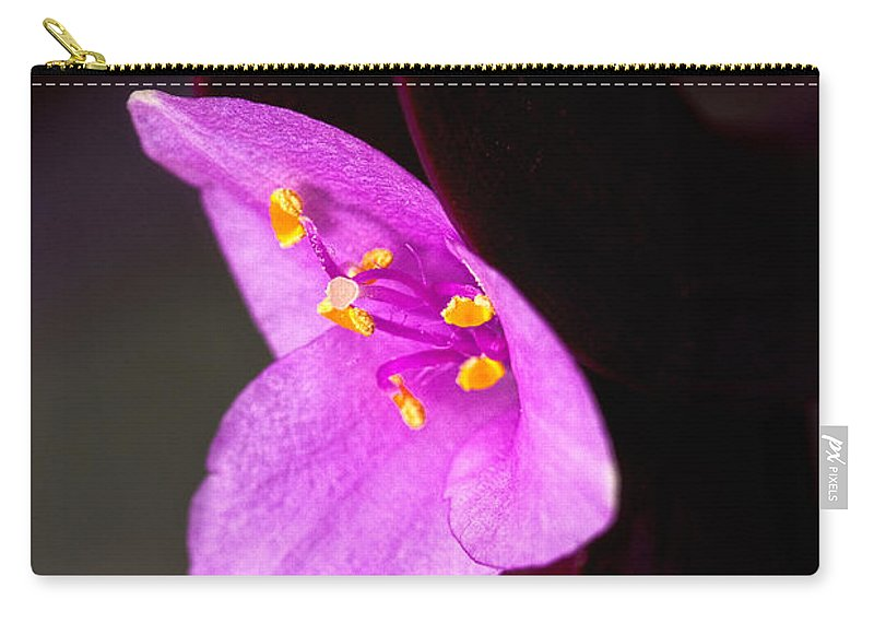 Flower Carry-all Pouch featuring the photograph Purple Queen by Christopher Holmes
