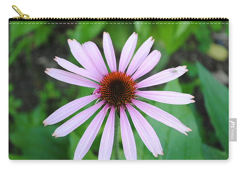 Purple Carry-all Pouch featuring the photograph Purple Rays by Jost Houk