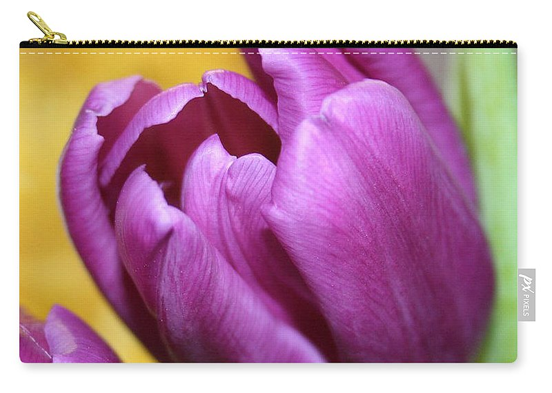 Flowers Nature Carry-all Pouch featuring the photograph Purple Spring by Linda Sannuti