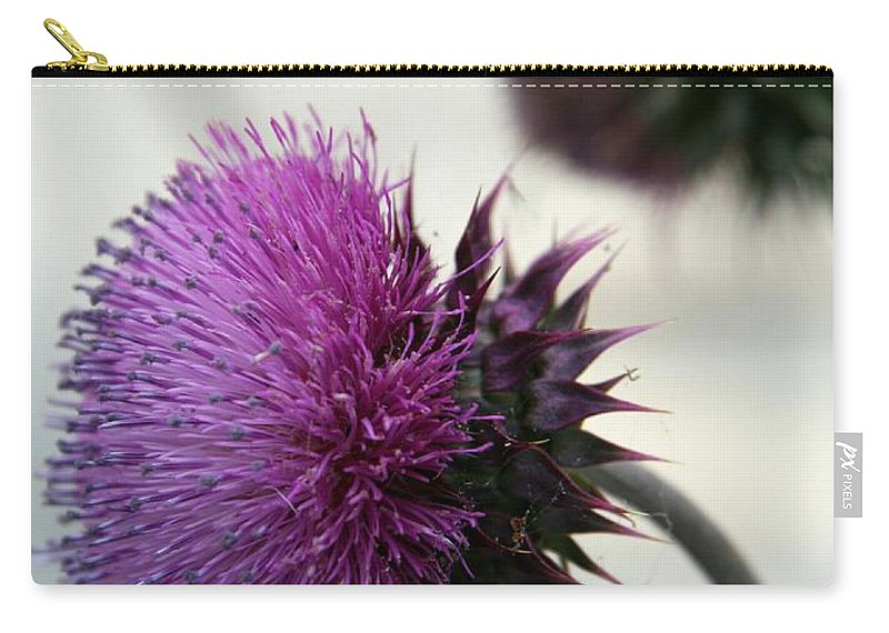 Thistle Carry-all Pouch featuring the photograph Purple Thistle by Christiane Schulze Art And Photography