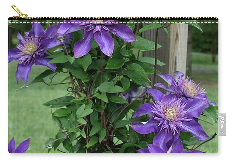 Purple Carry-all Pouch featuring the photograph Purple by Tina Meador
