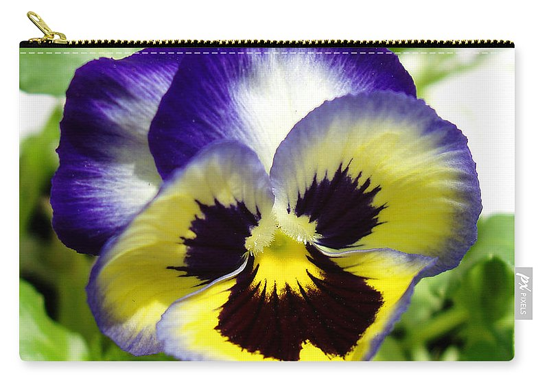 Pansy Carry-all Pouch featuring the photograph Purple White And Yellow Pansy by Nancy Mueller
