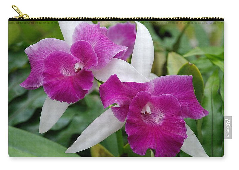 Macro Carry-all Pouch featuring the photograph Purple White Orchids by Rob Hans