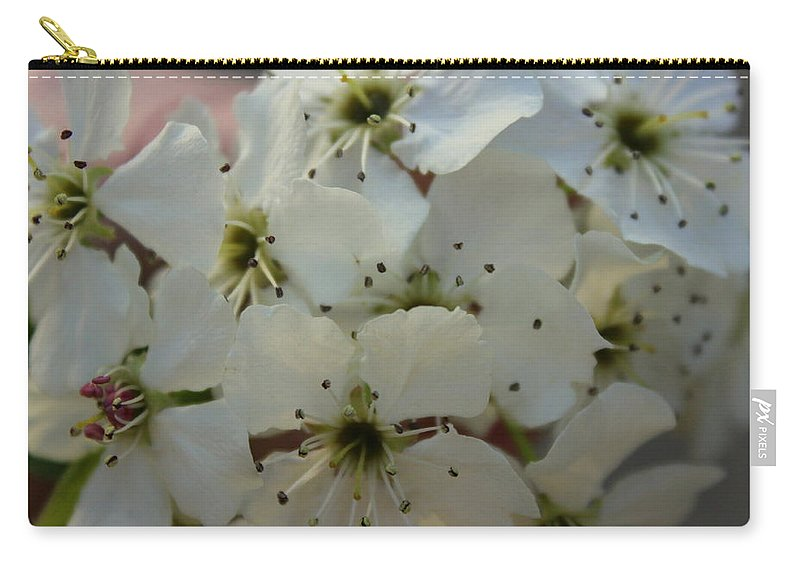 Flower Carry-all Pouch featuring the photograph Purpleleaf Sand Cherry Blossoms by Anita Hiltz