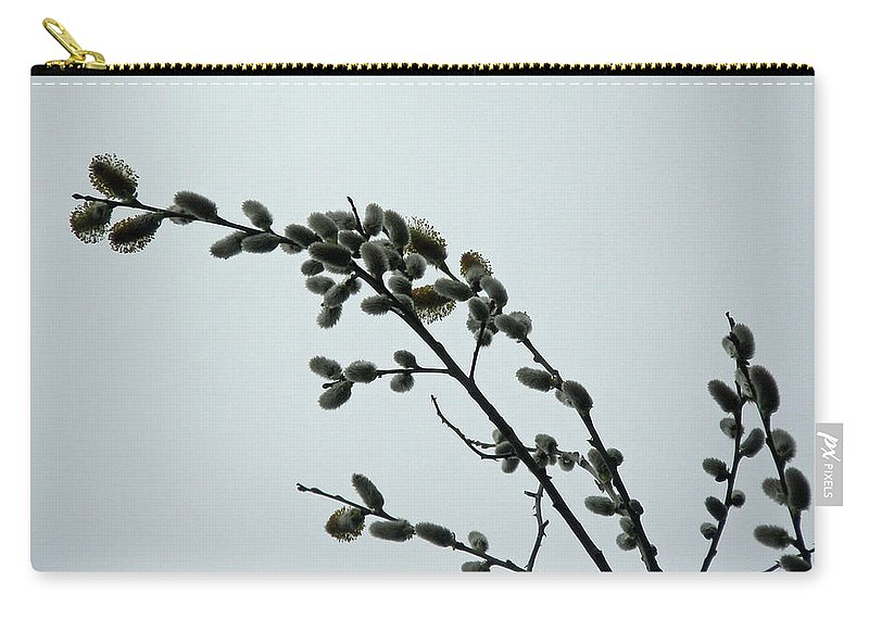 \\\pussy Willow\\\ Carry-all Pouch featuring the photograph Pussy Willow Catkins by Mother Nature