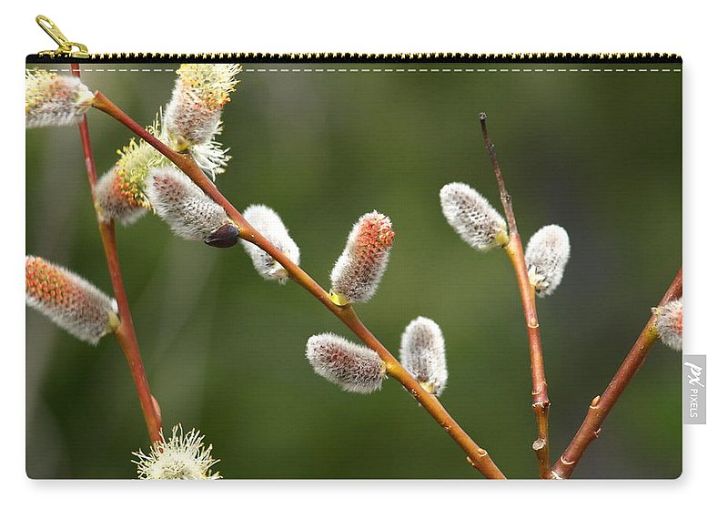 Willows Carry-all Pouch featuring the photograph Pussy Willows In Spring by DeeLon Merritt