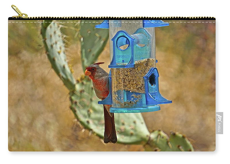 Birds Carry-all Pouch featuring the photograph Pyrrhuloxia Swinging On The Feeder by Bonnie See