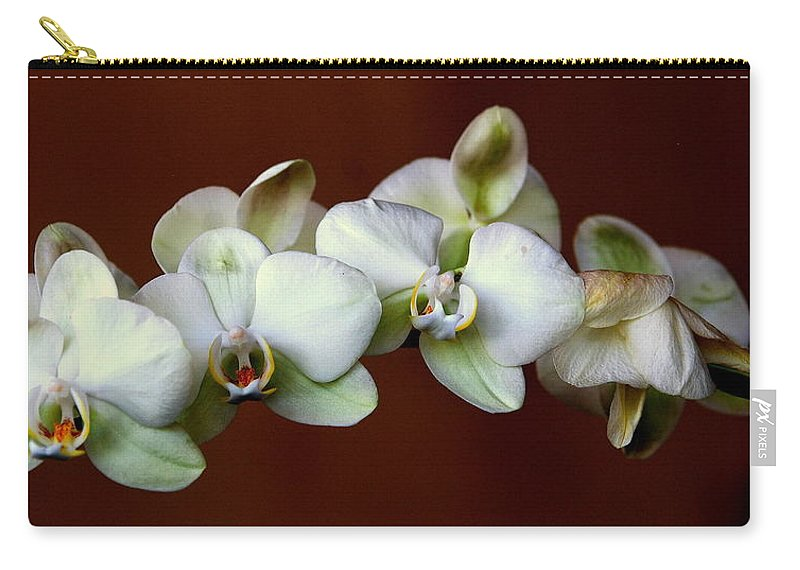 Orchids Carry-all Pouch featuring the photograph Quadruples by Susanne Van Hulst