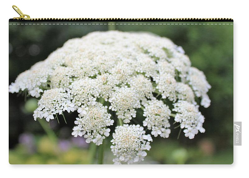 Wild Flowers. Queen Anns Lace Carry-all Pouch featuring the photograph Queen Ann's Lace by Paul Meinerth