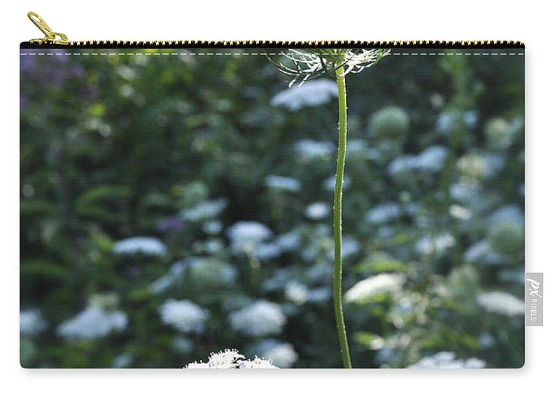Queen Anne's Lace Photograph Carry-all Pouch featuring the photograph Queen's Fantasy Field by Penny Neimiller