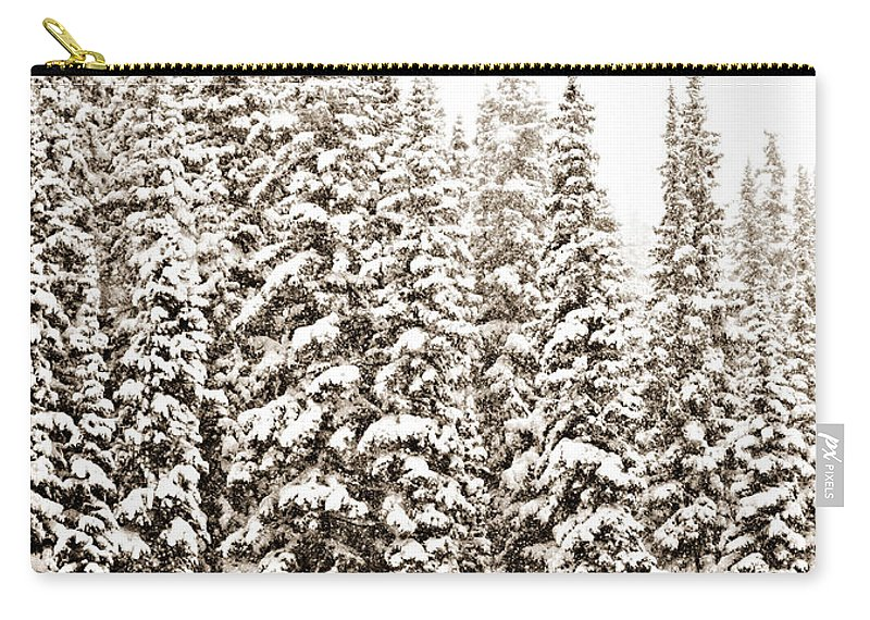 Quiet Carry-all Pouch featuring the photograph Quiet by Marilyn Hunt
