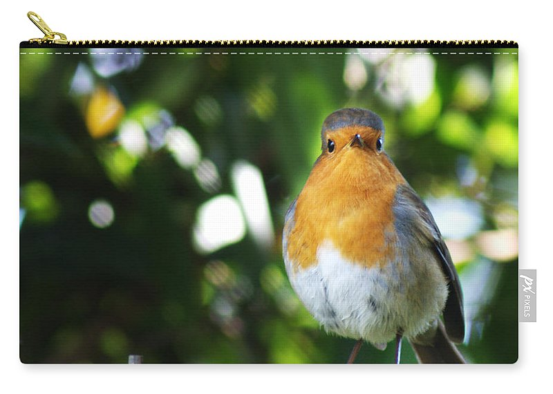 Robin Carry-all Pouch featuring the photograph Quizzical Robin by Chris Day
