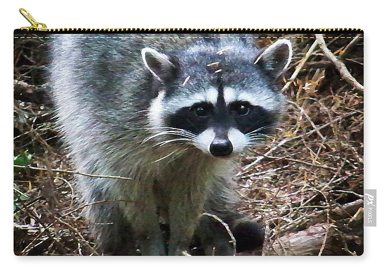 Painting Carry-all Pouch featuring the photograph Raccoon by Anthony Jones