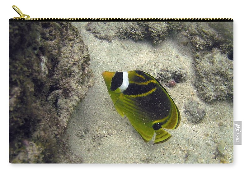 Hanauma Bay Carry-all Pouch featuring the photograph Raccoon Butterflyfish by Michael Peychich