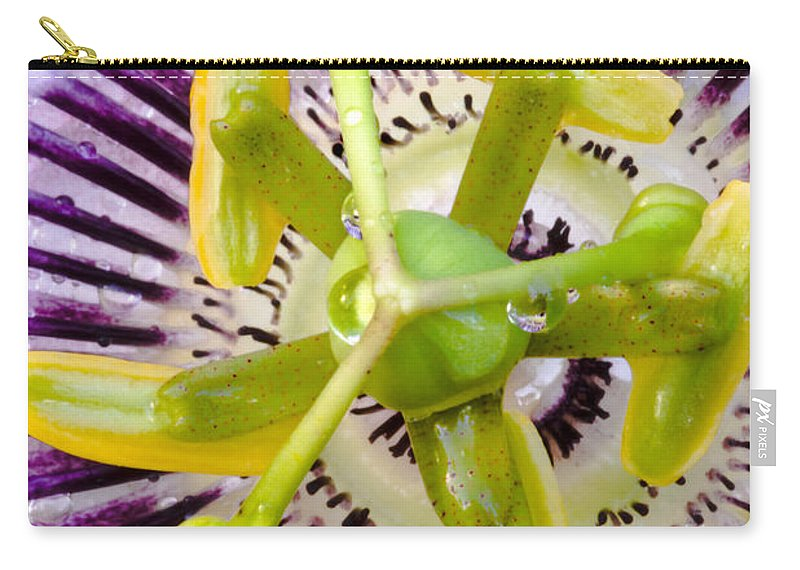 Passion Carry-all Pouch featuring the photograph Radial Arms by Christopher Holmes