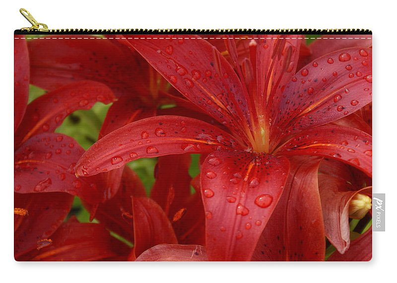 Rain Drops On Lilies Carry-all Pouch featuring the photograph Rain Drops Keep Falling On My Head by Joanne Smoley